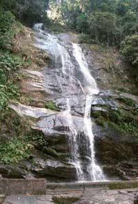 יער טיז´וקה - ריו דה ז´נירו