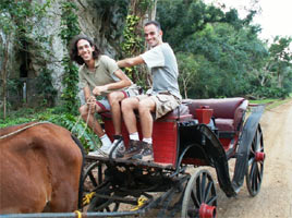 סוסים , וינאלס, קובה