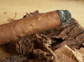 סיגר , וינאלס, קובה