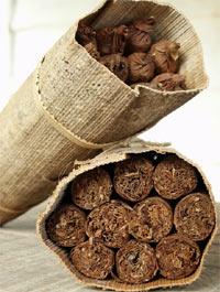 סיגרים , וינאלס, קובה